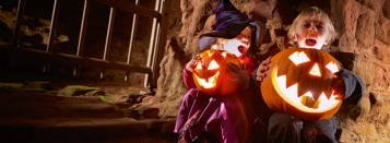 regular home-halloween-and-half-term-new